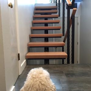 Modern staircase & flooring