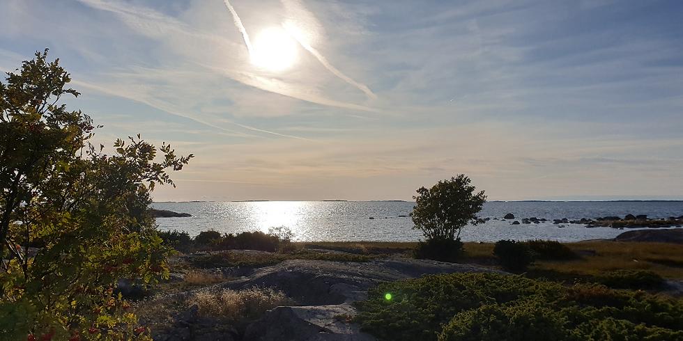 HUOM! Ajankohta muuttuu // Syksyn toiset talkoot Örössä 23.-25.9.2021