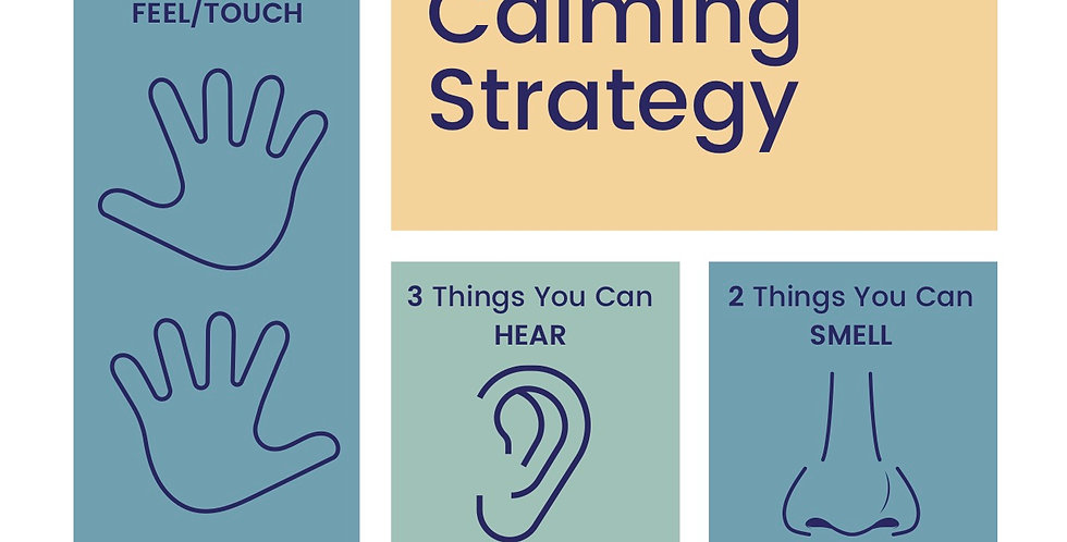 5 Senses Calming Strategy - Digital Download