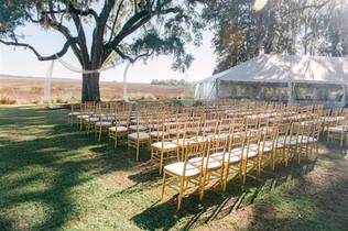 Ashliegh D. Wedding-7.jpg