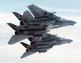 Two Tomcats images.jpg