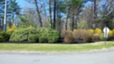 2012-04-03_11-00-23_28309.jpg