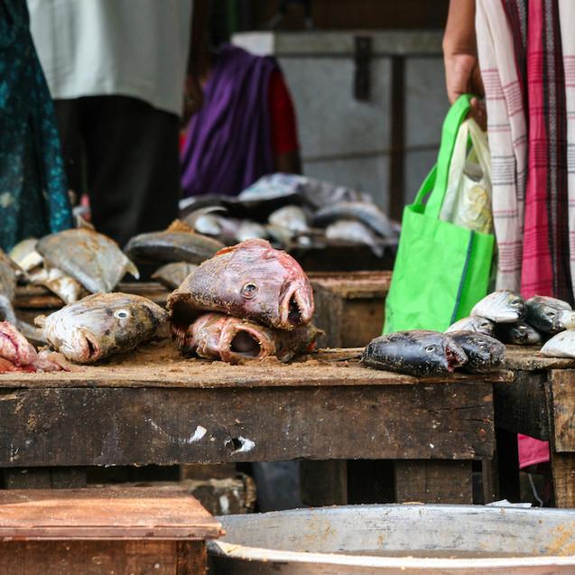 Trivandrum - India