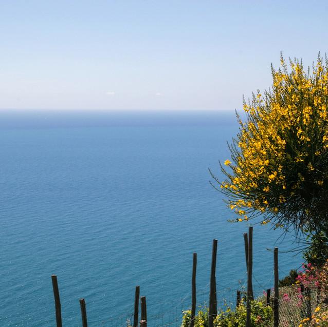 5 terre - Italy
