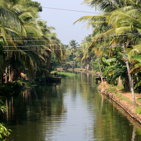 Backwaters - India