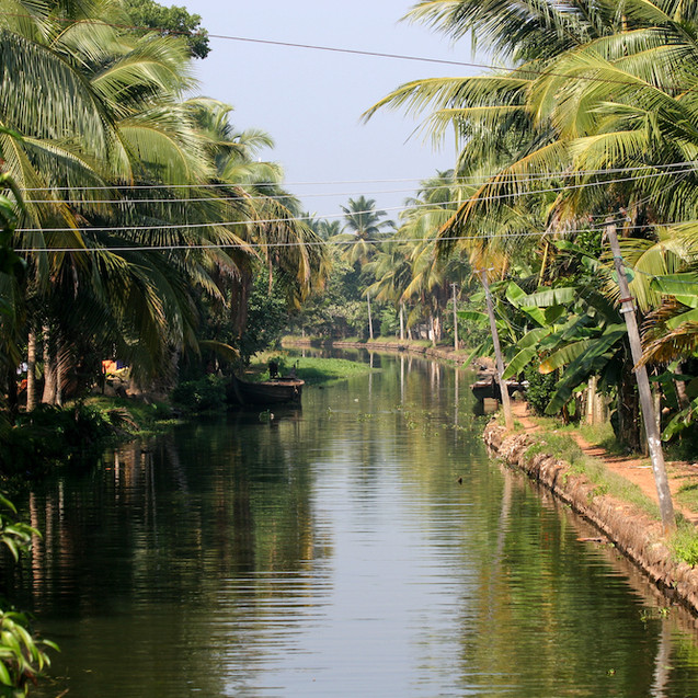 Backwaters - India