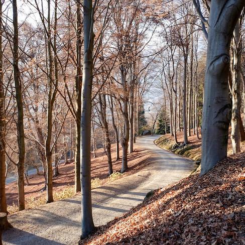 Parco Burcina - Italy