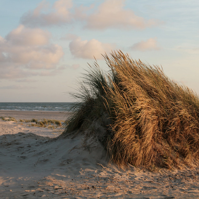 Jutland - Denmark
