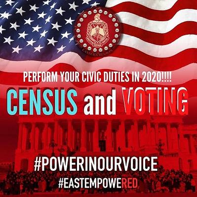 census flyer.jpg