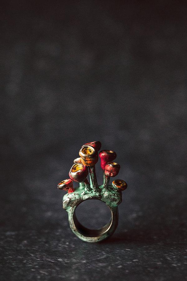 Niziblian: Yn Barod Ring