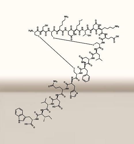 Sarafotoxin A