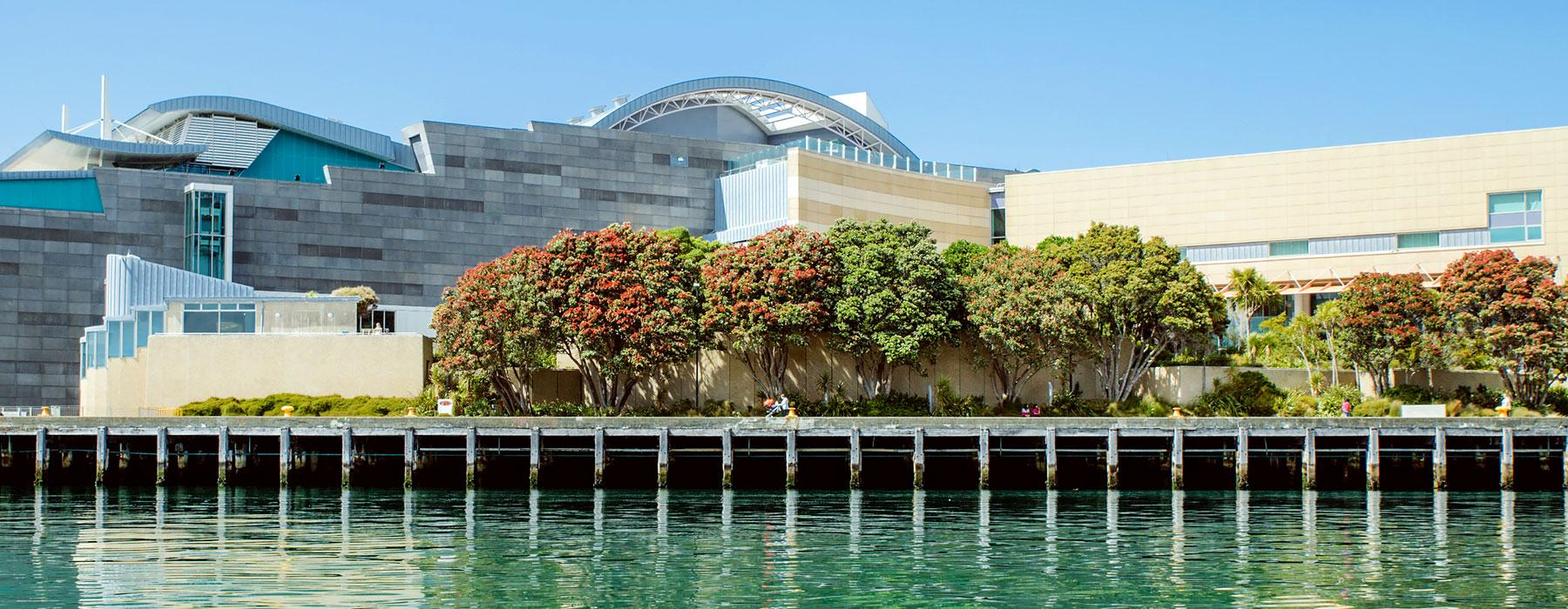 Te Papa from Waterfront
