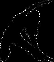 dance_shadow01-min.png