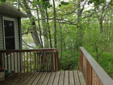 Top Deck Shared East Deck with Treetop Cottage
