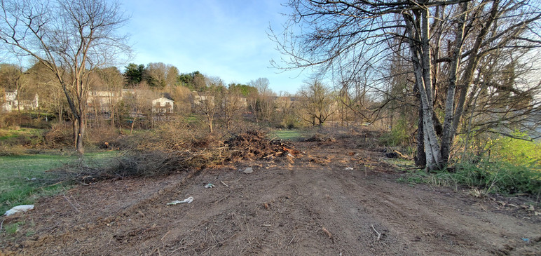 Clearing the New Property