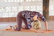 organisk yogakatt 6.jpg