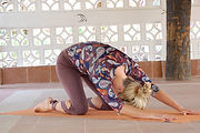 organsik yogakatt 2.jpg