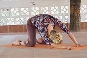 organisk yogakatt 4.jpg