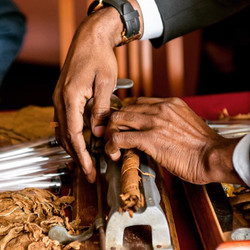 сигарное шоу, крутильщик сигар,