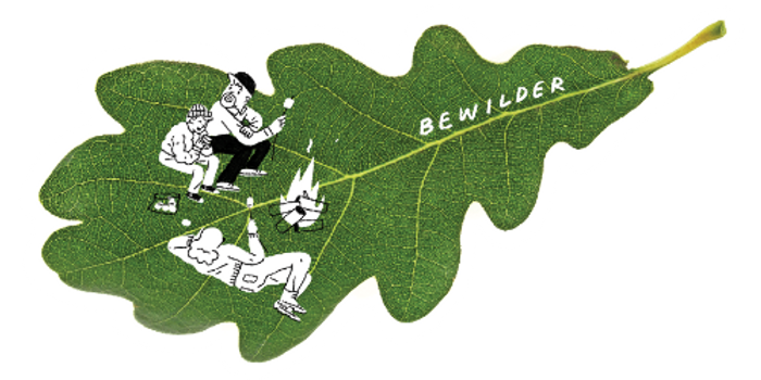 bewilder_leaf_edited.png