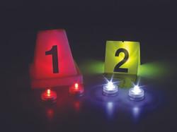 forensics7.jpg