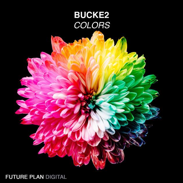 Bucke2 - Colors.jpg