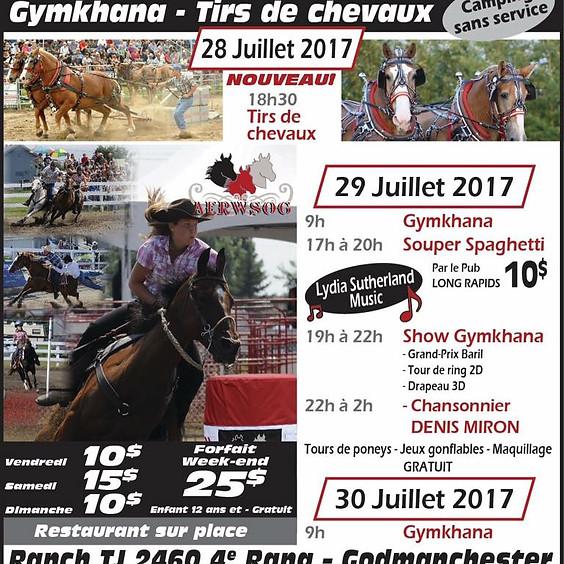 Competition Gymkhana