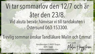 Sommarannons21.jpg