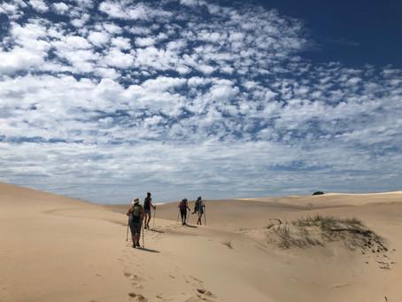 Südafrika: Chokka, Johannesburg & Co.