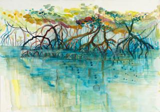Dubuji Bordwalk Mangroves.jpg