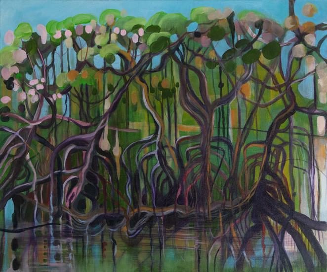 Dubuji Boardwalk Mangroves