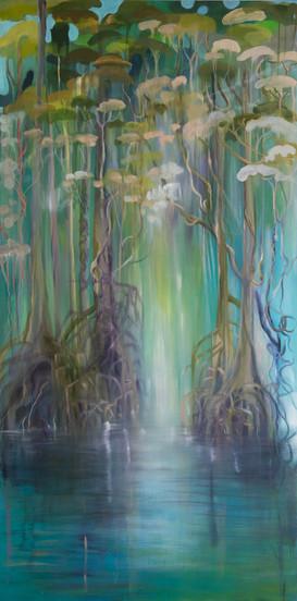 Boardwalk Mangrove
