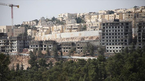 Israel announces tenders for 1,355 homes in occupied territories