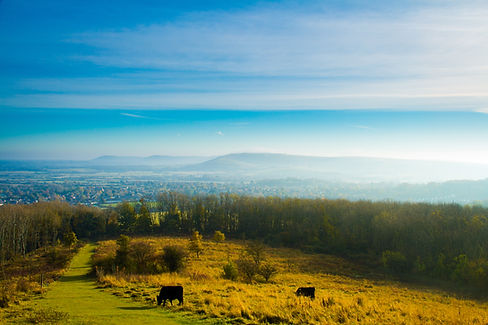 morning mist over Steyning and the South
