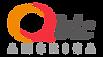 Qbic America_Company logo(website).png