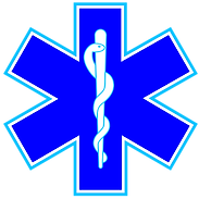 350px-Star_of_life3.svg.png