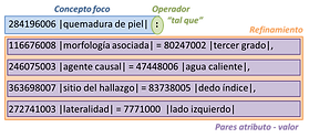 implementacionSNOMED.png