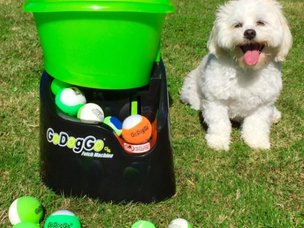 GoDogGo Fetch Machine G4 Automatic Ball Launcher for Dogs