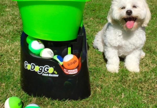GoDogGo Fetch Machine G4 Automatic Ball Launcher for Dogs