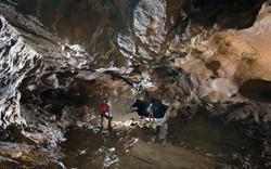 Galerie principale - Grotte du Revest -