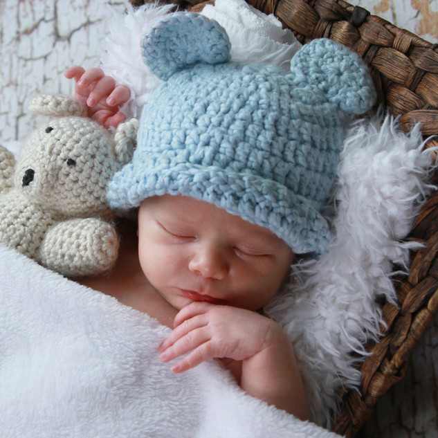 Newborn Teddy Bear Portrait