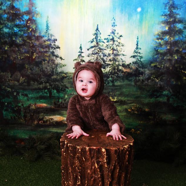 Little Adventurer Woodland Portrait