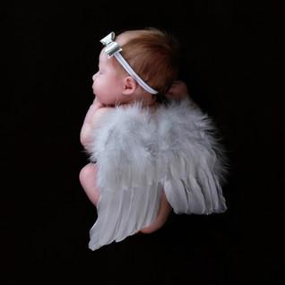 Angel Newborn Portrait.jpg