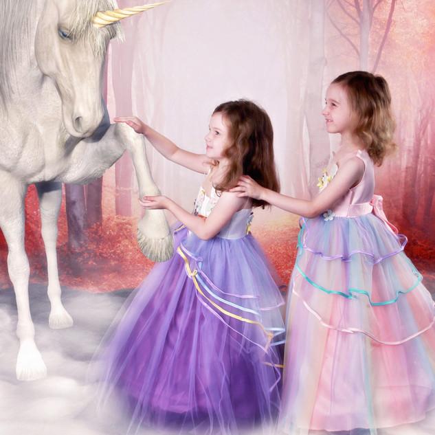 Enchanted Unicorn Session