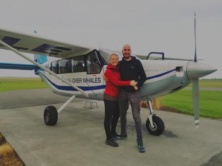 Het adembenemende Zuidereiland van Nieuw-Zeeland