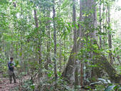 Ecotourism Plan Trancoso