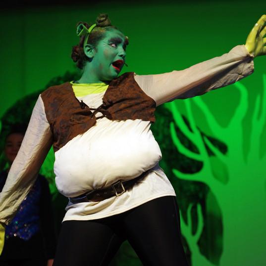 Shrek FIS.jpg