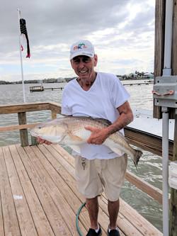 DAD fish