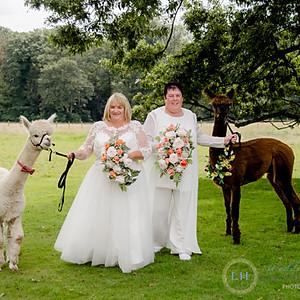 Sorenson Wedding Preview