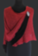 Winterponcho_Rot.png